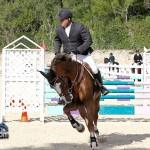 Horse Jumping Bermuda January 22 2011-1-12