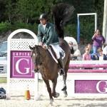 Horse Jumping Bermuda January 22 2011-1-15
