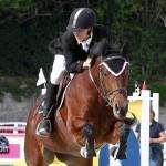 Horse Jumping Bermuda January 22 2011-1-28