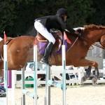 Horse Jumping Bermuda January 22 2011-1-34