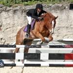 Horse Jumping Bermuda January 22 2011-1-35
