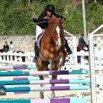 Horse Jumping Bermuda January 22 2011-1-38