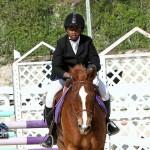 Horse Jumping Bermuda January 22 2011-1-39