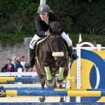 Horse Jumping Bermuda January 22 2011-1-40