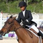 Horse Jumping Bermuda January 22 2011-1-7