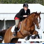 Horse Jumping Bermuda January 22 2011-1-9