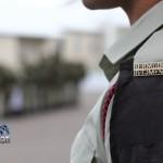bermuda regiment badge generic