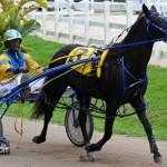 Harness Pony Racing Bermuda February 11 2012-1-10