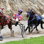 Harness Pony Racing Bermuda February 11 2012-1