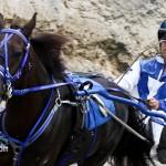 Harness Pony Racing Bermuda February 11 2012-1-2