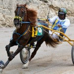 Harness Pony Racing Bermuda February 11 2012-1-3