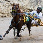 Harness Pony Racing Bermuda February 11 2012-1-5