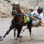 Harness Pony Racing Bermuda February 11 2012-1-5