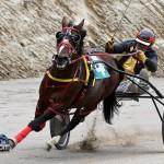 Harness Pony Racing Bermuda February 11 2012-1-6