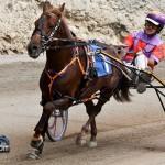 Harness Pony Racing Bermuda February 12 2012-1-2