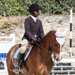 Hinson Hall Jumper Show Horses Bermuda March 18 2012-1-14