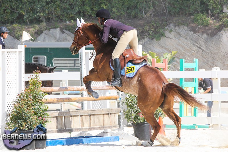 accident equitation olivia