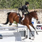 Hinson Hall Jumper Show Horses Bermuda March 18 2012-1-21