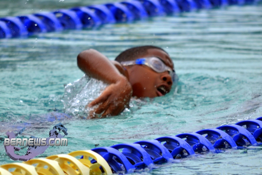 summer thunder swim meet 2012 results