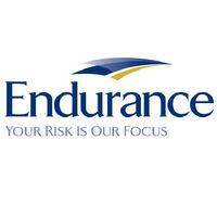 Endurance Logo 1