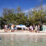 Fripper Turtle Release Clearwater Beach Bermuda August 14 2012 (11)