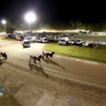Driving Horse & Pony Club Harness Pony Racing Bermuda, September 29 2012 (19)