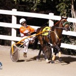 Driving Horse & Pony Club Harness Pony Racing Bermuda, September 29 2012 (2)