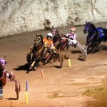 Driving Horse & Pony Club Harness Pony Racing Bermuda, September 29 2012 (25)