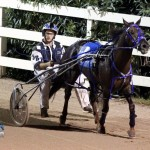 Driving Horse & Pony Club Harness Pony Racing Bermuda, September 29 2012 (3)