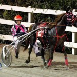 Driving Horse & Pony Club Harness Pony Racing Bermuda, September 29 2012 (30)
