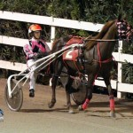 Driving Horse & Pony Club Harness Pony Racing Bermuda, September 29 2012 (4)