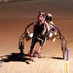 Driving Horse & Pony Club Harness Pony Racing Bermuda, September 29 2012 (8)
