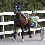 Harness Pony Racing Bermuda, September 21 2012 (1)