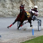 Harness Pony Racing Bermuda, September 21 2012 (4)