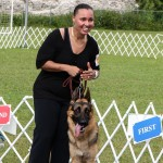 Bermuda Kennel Club Dog Show, October 20 2012-1-29