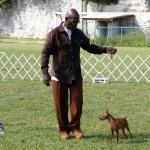 Bermuda Kennel Club Dog Show, October 20 2012 (30)