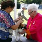 Bermuda Kennel Club Dog Show, October 20 2012 (40)