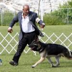 Bermuda Kennel Club Dog Show, October 20 2012 (59)