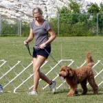Bermuda Kennel Club Dog Show, October 20 2012 (61)