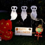 Melville Estates Halloween Bermuda, Oct 31 2012 (1)