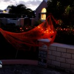 Melville Estates Halloween Bermuda, Oct 31 2012 (25)