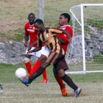 Dudley Eve Semi Finals NVCC Rams vs Dandy Town Hornets Bermuda, November 4 2012 (32)