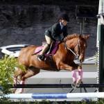 Inwood Hunter Jumper Show Horses Bermuda Equestrian, November 25 2012 (12)