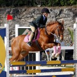 Inwood Hunter Jumper Show Horses Bermuda Equestrian, November 25 2012 (14)