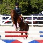 Inwood Hunter Jumper Show Horses Bermuda Equestrian, November 25 2012 (16)