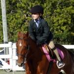 Inwood Hunter Jumper Show Horses Bermuda Equestrian, November 25 2012 (17)