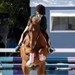 Inwood Hunter Jumper Show Horses Bermuda Equestrian, November 25 2012 (19)