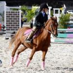 Inwood Hunter Jumper Show Horses Bermuda Equestrian, November 25 2012 (20)