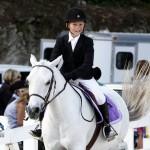 Inwood Hunter Jumper Show Horses Bermuda Equestrian, November 25 2012 (3)