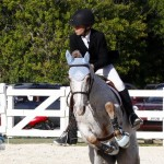 Inwood Hunter Jumper Show Horses Bermuda Equestrian, November 25 2012 (31)